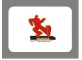 AIPA Winner 2006, Hindustan Latex